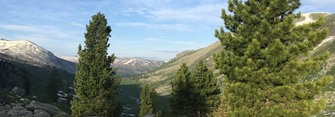 Beautiful Altay